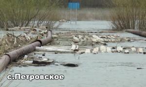 Состояние моста в селе Петровское