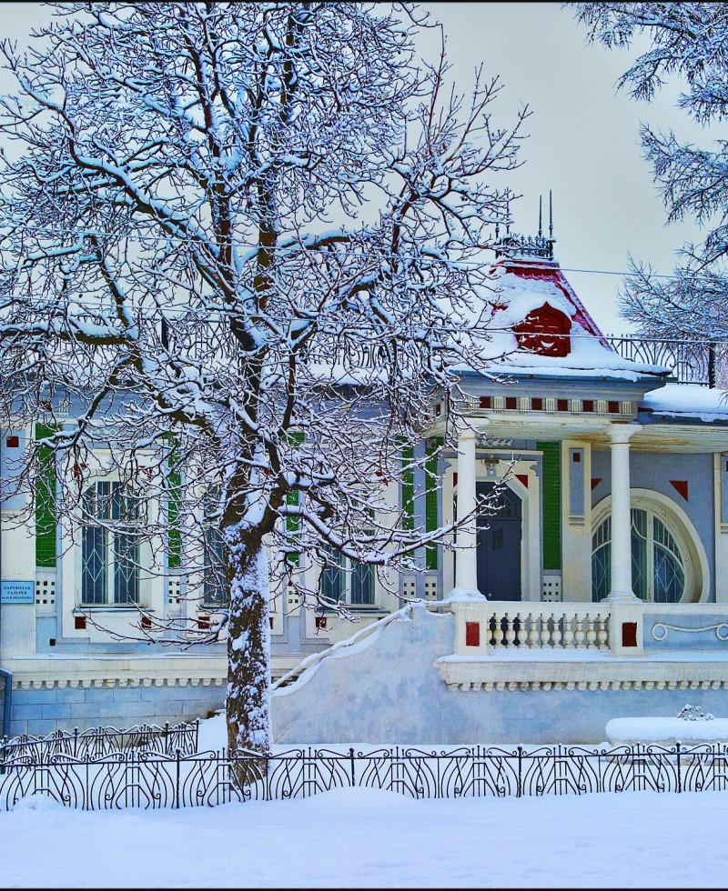 Зима (4)