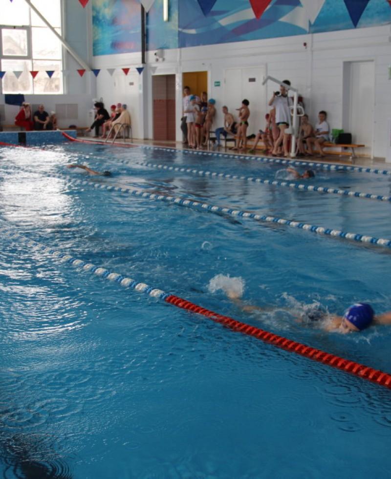 Плавание-День-защит-отечества-226-1024×683